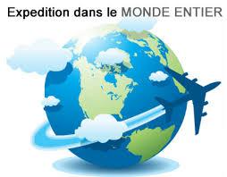 FlyPix livre des abris gonflables partout dans le monde.